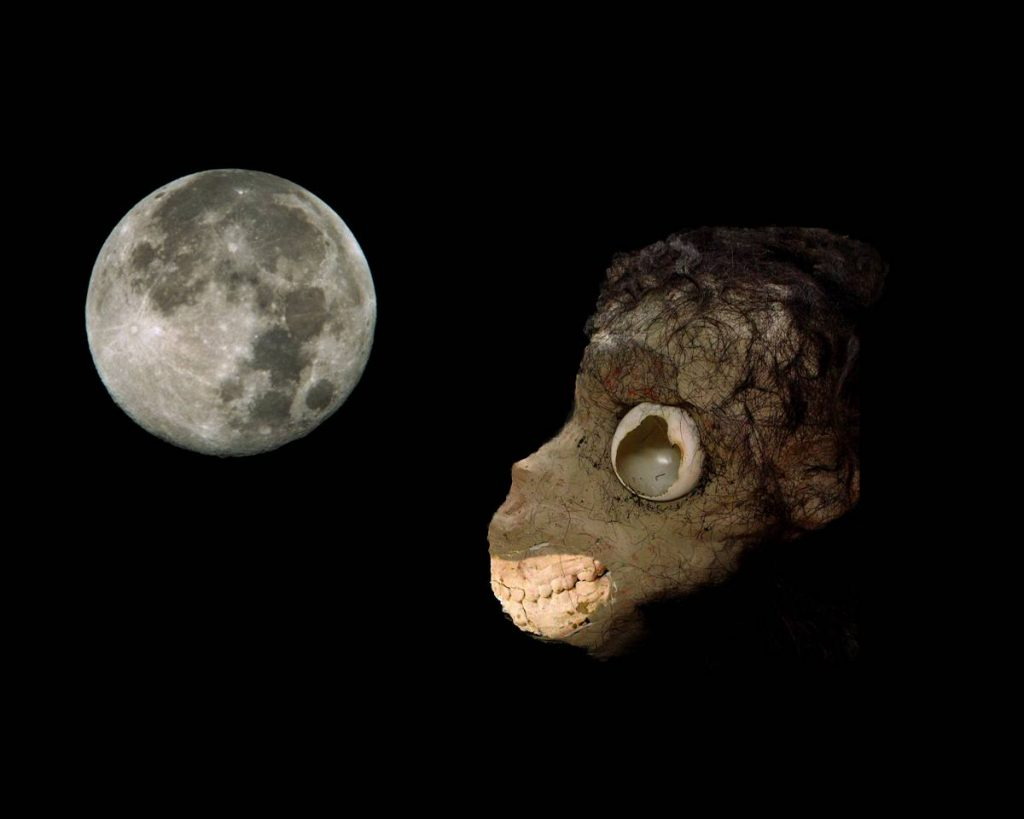 Adam Rabinowitz, Monkey moon, 2004