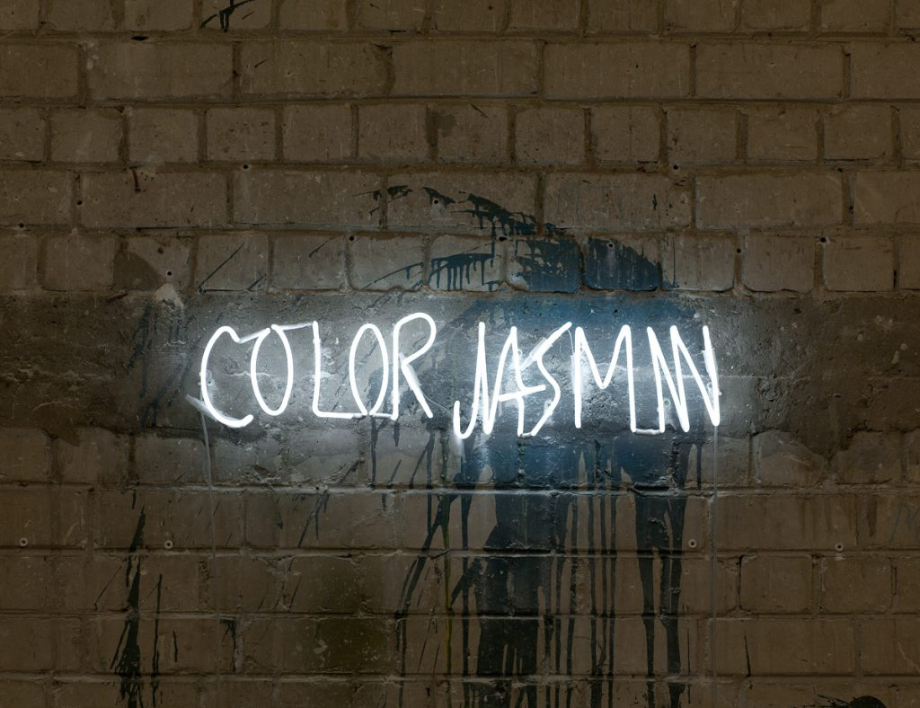 Adel Abdessemed, Color Jasmin, 2011, neon, 17.5x70 cm, edition 3/7