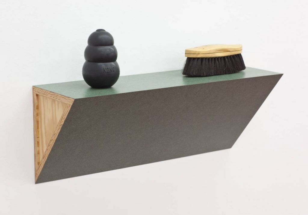 Haim Steinbach, Untitled (brush, dog chew), 2008, 42 x 68.5 x 23 cm, unique