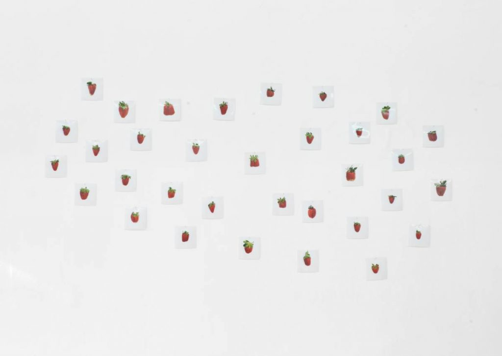 Hans-Peter Feldmann, 1 Pound Strawberries, 34 c-prints, print 10x10 cm each