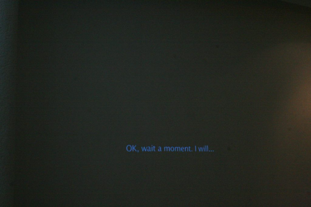 Miri Segal, Whatever You Say?, 2009, diptych projection