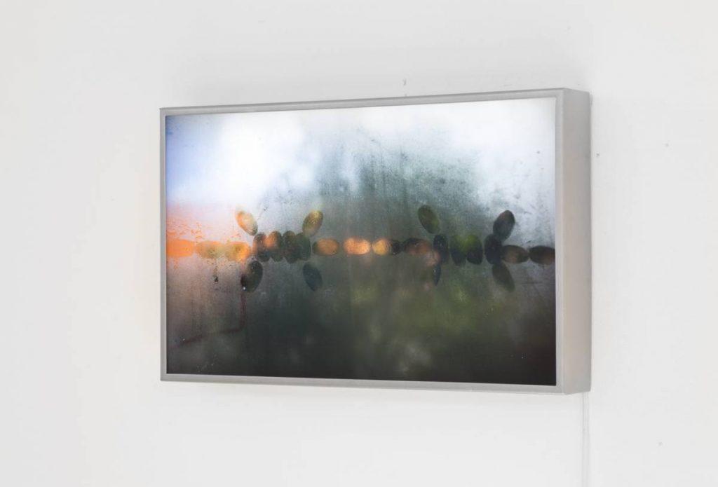 Mircea Cantor, Chapelet, 2013, lightbox, 50.25 x 31.75 x 7 cm, edition 3 of 7