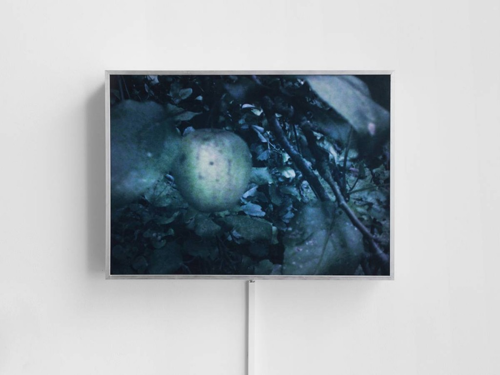 Miroslaw Balka, Apple T, 2009, lightbox, 46 x 63 x 11 cm, unique