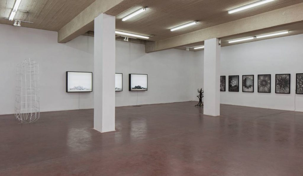 Dilemma, 2016, Exhibition view