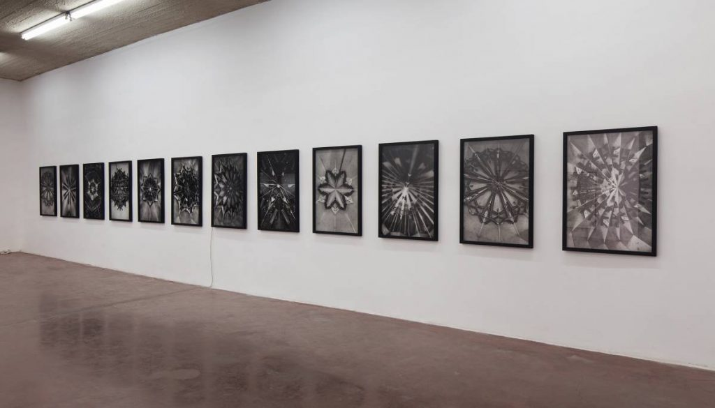 Mircea Cantor, Holy flowers 1-12, 2010, black and white inkjet print on archival paper, 99 x 65 cm each, edition of 7 +2AP, exhibition view, Dvir Gallery, Tel Aviv