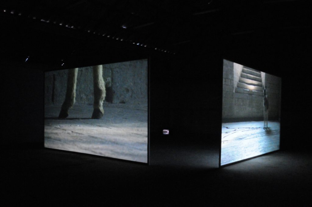 Douglas Gordon, 2009, exhibition view