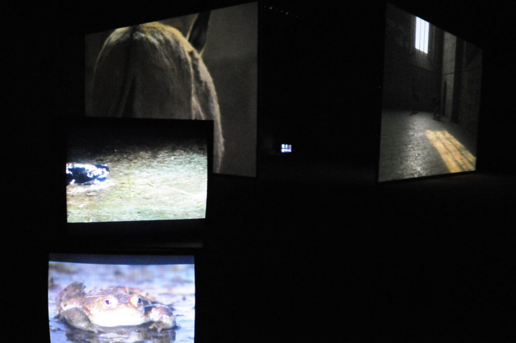 Douglas Gordon, 2009, exhibition view