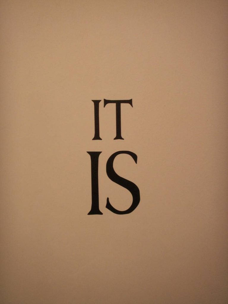 "Haim Steinbach, ""it is"", 2006, Wall text"