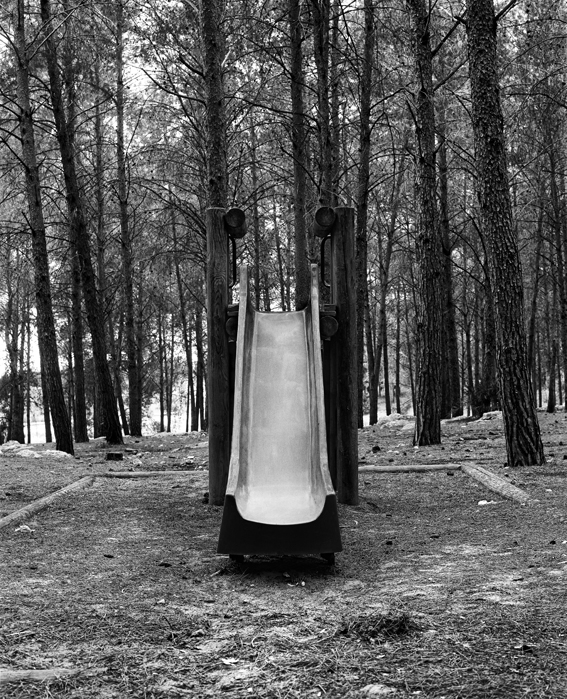 Dor Guez, Pines, 2011, series of black and white photographs, 40x33cm each