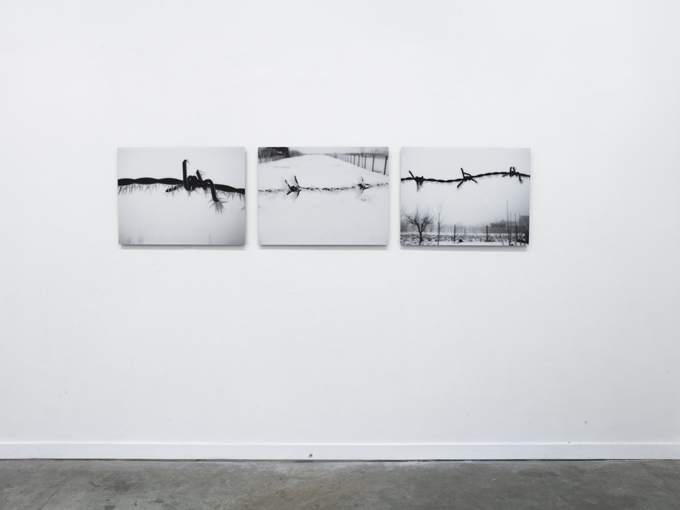 Mircea Cantor, Protection, 2010, c-print triptych 50 x 70cm x 3, edition of 7+2 A/P