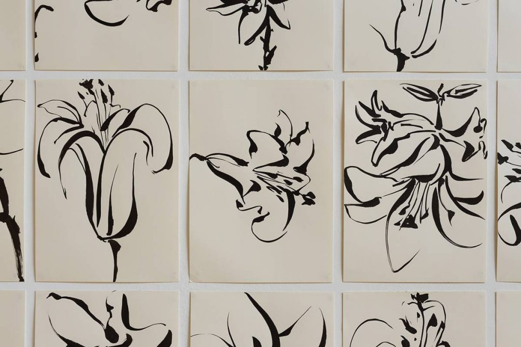 Mircea Cantor, Series of 15 drawings (Lilies), 2016, Japanese ink on paper, 42 x 29 cm, unique (detail)