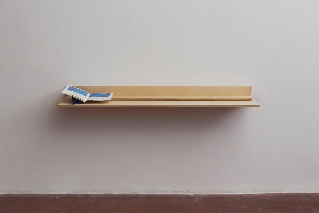 Barak Ravitz, Blue II, Blue III, 2016, Miro- Taschen publisher, metal rings, rake, Plywood shelf, 13x38x167 cm, Unique
