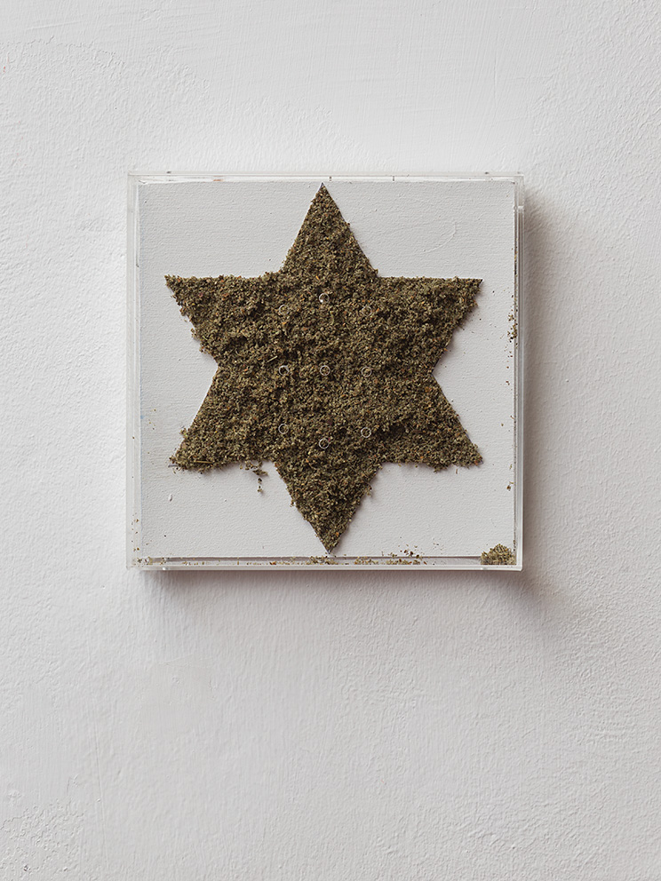 •	Adel Abdessemed, Ken, 2000, Cannabis paste, Plexiglas box, Star: 17x17 cm, Overall: 22x22x6 cm, Edition of 3 +1 AP