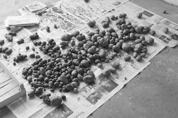 •	Yossi Breger, Potatoes on Newspapers, Pesch (Eifel), Germany, 2007, c-print, 20x30 cm, Edition of 5