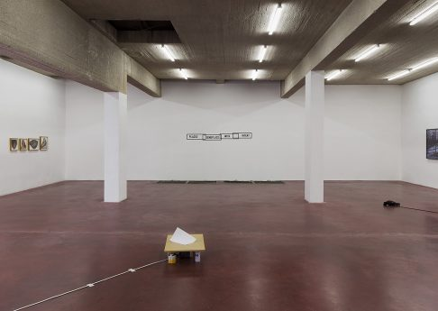 Placed Someplace with Intent, 2017, Exhibition view