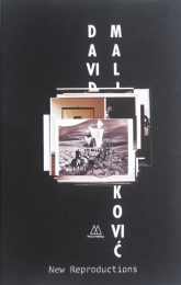 David Maljkovic_New Reproduction_2013_Mousse Publishing