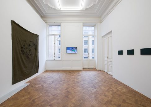 Innocent Material, 2017, exhibition view