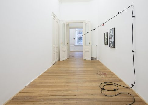 Ariel Schlesinger, 2017, Exhibition view