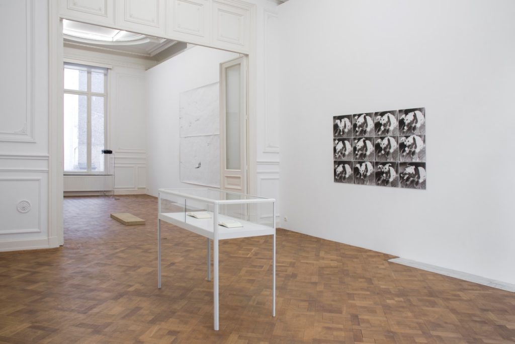 Dance to the Music of Time, 2017, exhibition view