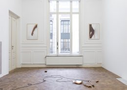 Naama Tsabar, Dedicated, 2018, Installation view