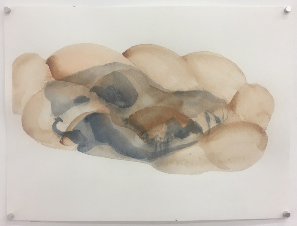 Alma Itzhaky, Untitled (Kelev Challah), 2018, water color on paper, 23 x 30.5 cm, unique