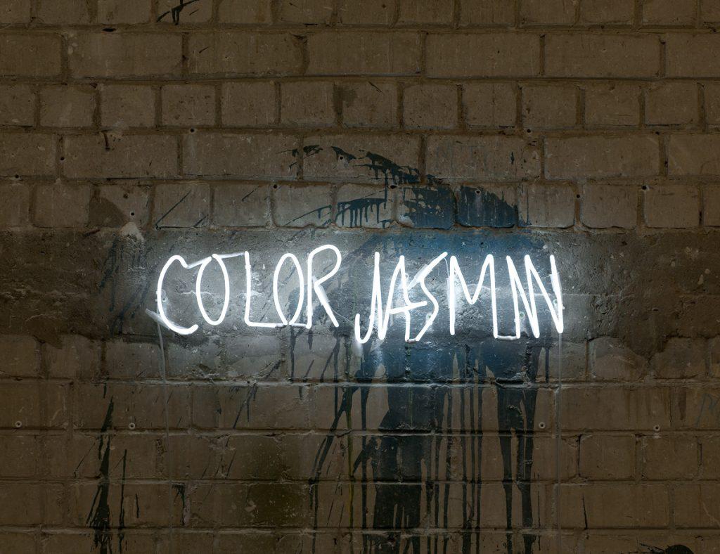 Adel Abdessemed, Color Jasmin, 2011, neon, 17.5 x 70 cm, edition of 7