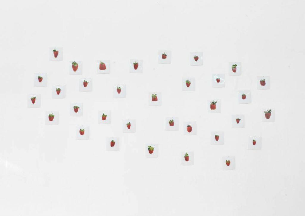 Hans-Peter Feldmann, 1 Pound Strawberries, 34 c-prints, print 10 x 10 cm each