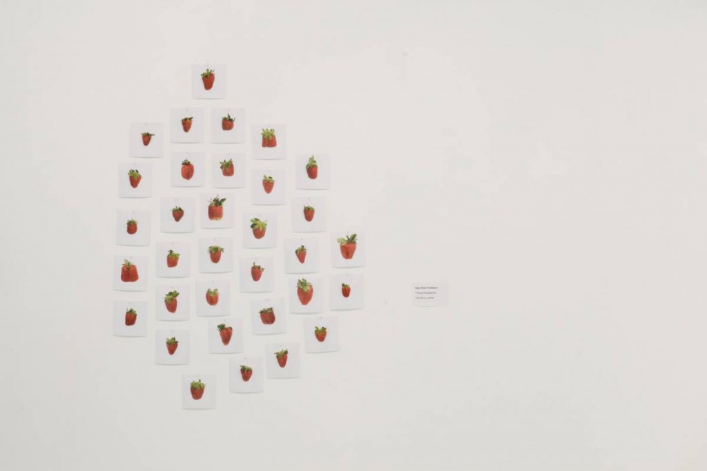 Hans Peter Feldmann, 1 Pound Strawberries, 2007, 34 c-prints, 10 x 10 cm