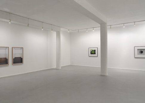 New works, 2011, Exhibition view