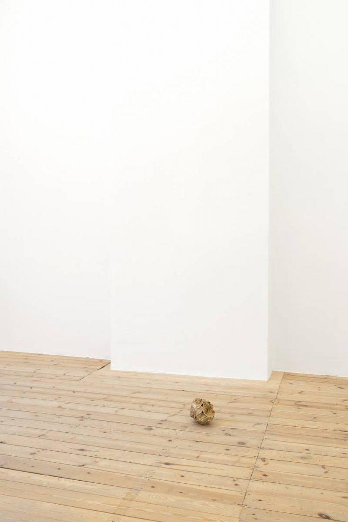 Ariel Schlesinger, Untitled (Inside Out Skull), 2014, Skull, glue 15 x 20 x 17 cm, Unique