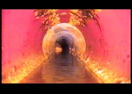 'Economy of Excess' (video still), 2005, video, 9 min, edition of 4