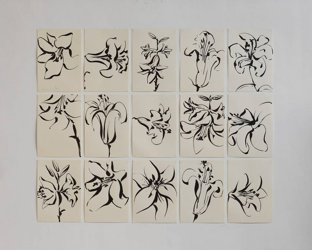 Mircea Cantor, Series of 15 drawings (Lilies), 2016, Japanese ink on paper, 42 x 29 cm, unique