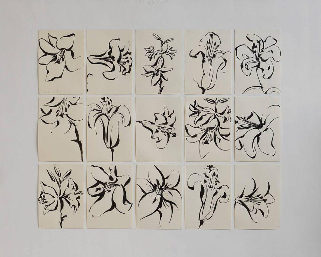 Mircea Cantor, Series of 15 drawings (Lilies), 2016, Japanese ink on paper, 42 x 29 cm