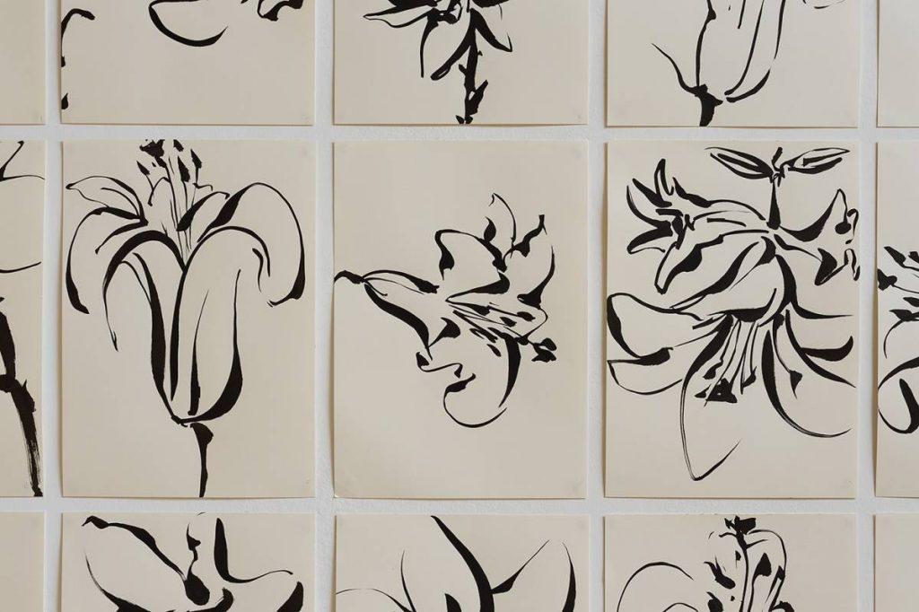 Mircea Cantor, Series of 15 drawings (Lilies), (detail), 2016, Japanese ink on paper, 42 x 29 cm