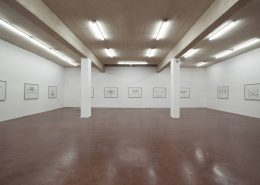 Down where the little fishes grow, 2014, Exhibition view