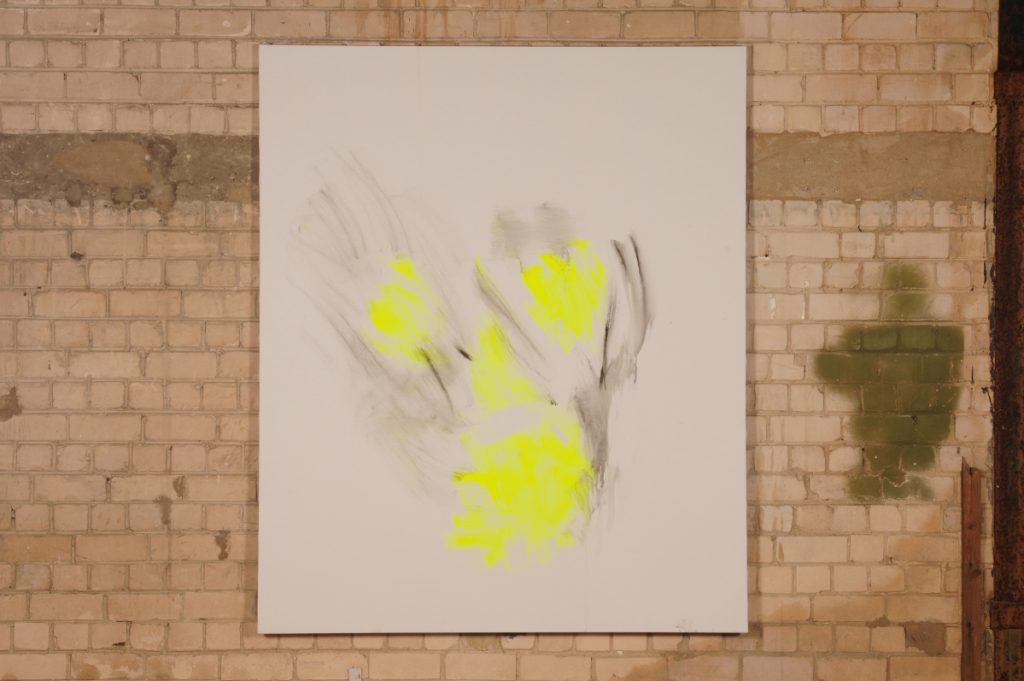 Yudith Levin, White Phosphorus 5, 2009, acrylic on canvas, 150 x 170 cm
