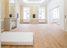 AAASSEMBLAGE, 2016, Exhibition view
