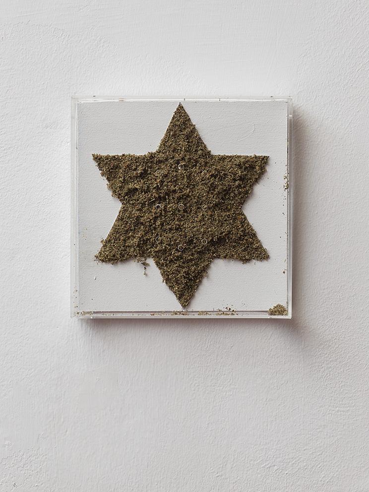 Adel Abdessemed, Ken, 2000, cannabis paste, plexiglas box, star 17 x 17 cm, overall 22 x 22 x 6 cm, edition of 3 +1 AP
