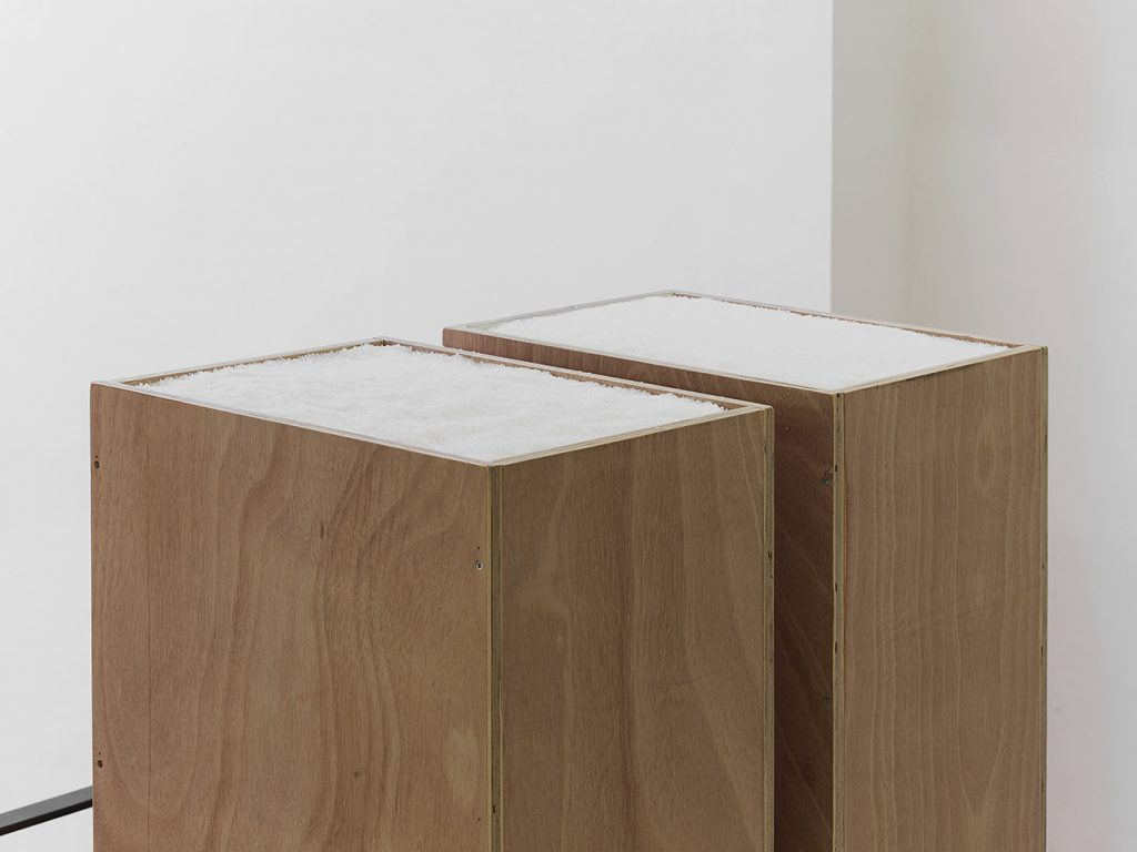Miroslaw Balka, up to my eyes level talked into blindness (detail), 2017, plywood, kitchen salt, 45 x 35 x 177 cm each, unique