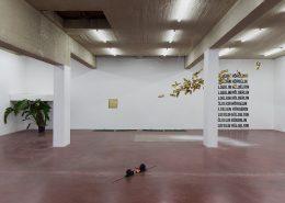 Pallaksh Pallaksh, 2017, Exhibition view