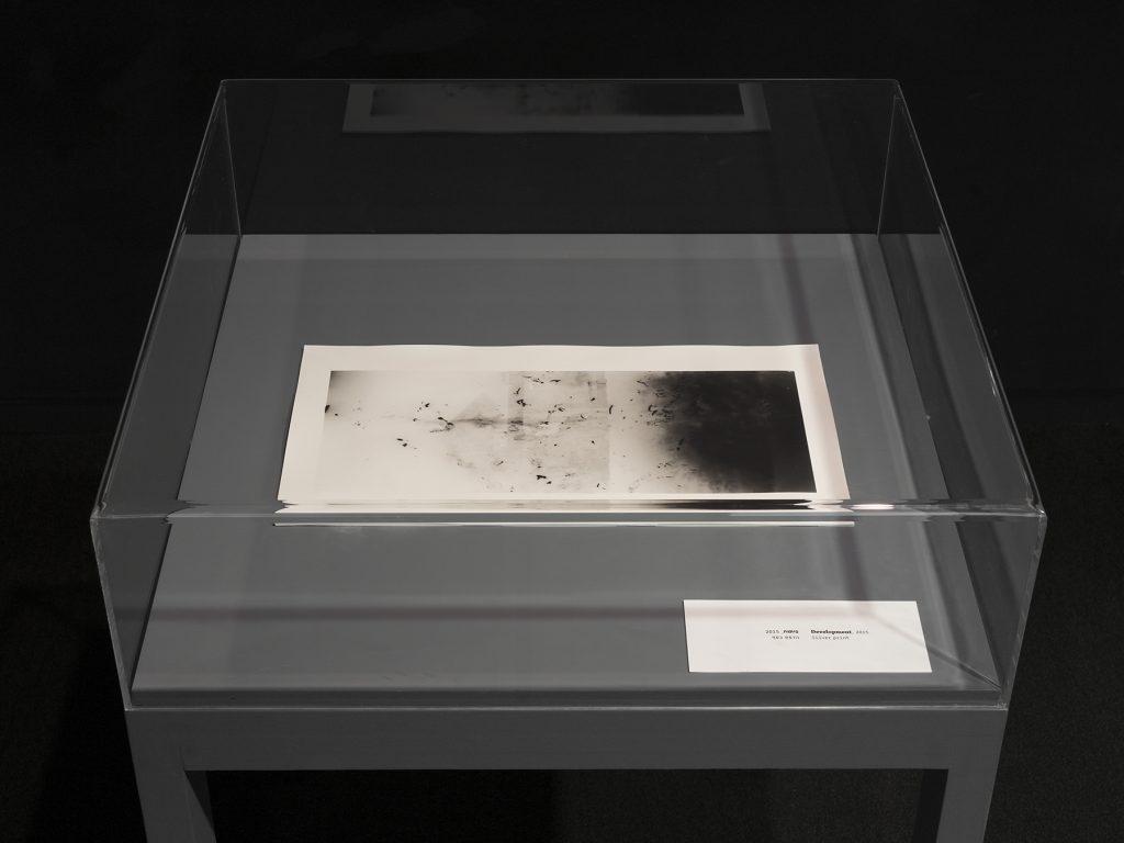 Shai-Lee Horodi, Development, 2015, 5'' video, silver print, unique