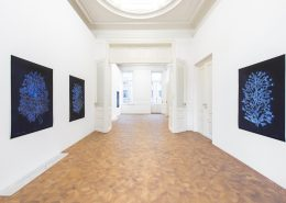 'Lilies of the Field', 2018, exhibition view, Dvir Brussels